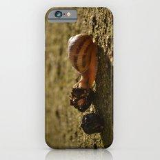 Fast Food iPhone 6s Slim Case