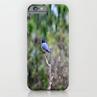 Perilously Perched iPhone 6 Slim Case