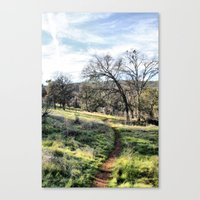 Trail into the Woods Canvas Print