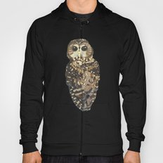 Northern Spotted Owl. Hoody