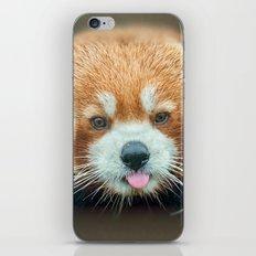 PANDA-RING TO ONE'S TASTE iPhone & iPod Skin