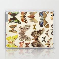 Collection Laptop & iPad Skin