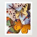 Vintage Butterfly Collage Art Print