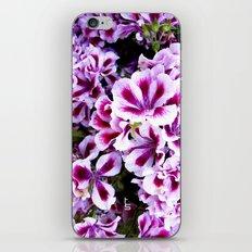 Martha Washington Geranium I iPhone & iPod Skin