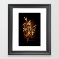 BAM BONE 038 Framed Art Print