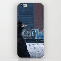 Be Crow iPhone & iPod Skin