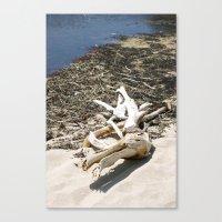 Sand Beach Canvas Print