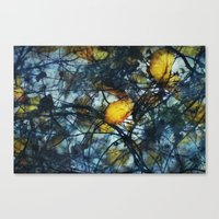 Tangled Winter Canvas Print