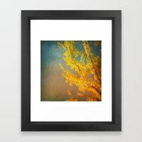 Yellow Ginkgo Tree in Autumn Framed Art Print