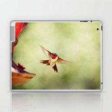 The Hummingbird Laptop & iPad Skin