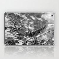 Waterfall Snowfall Laptop & iPad Skin