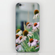 Mellow iPhone & iPod Skin