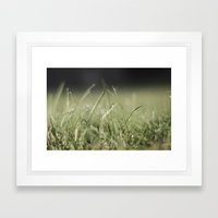 The Grass Is Always Greener Framed Art Print