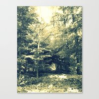 Enter Into Magic Canvas Print