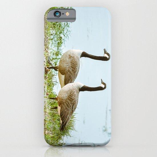 Gazing Geese iPhone & iPod Case