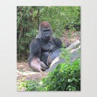 Gorilla Says Canvas Print