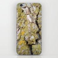 Trippy Bark iPhone & iPod Skin