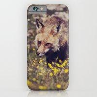 Summer Fox iPhone 6 Slim Case