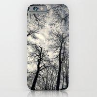 Sky-reaching Trees iPhone 6 Slim Case