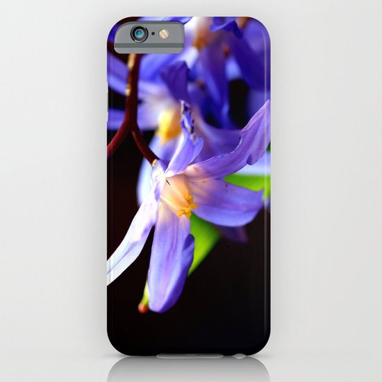 Bluestar bloom iPhone & iPod Case