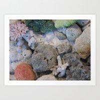 Corals Of The Andaman Se… Art Print