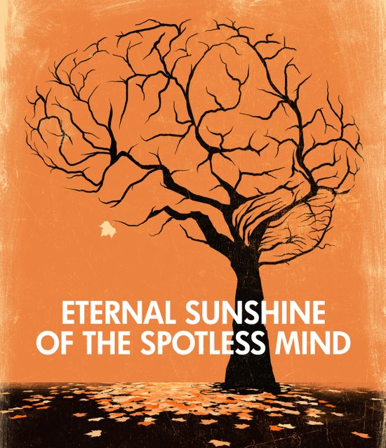 Eternal Sunshine Of The Spotless Mind - Movie Poster Canvas Print