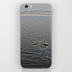 Dolphin Leap iPhone & iPod Skin
