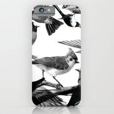 A Volery of Birds Slim Case iPhone 6s