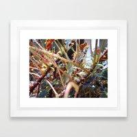 Dragon Fight    [PLANTS]   [VINES] Framed Art Print