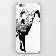 Ram Stamp  iPhone & iPod Skin