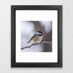 Chickadee Watch Framed Art Print
