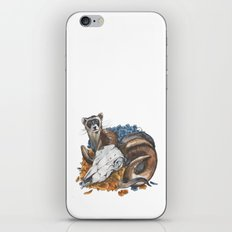 ferret and skull iPhone & iPod Skin