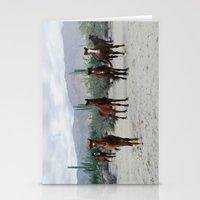 Bahía de los Ángeles Wild Horses Stationery Cards
