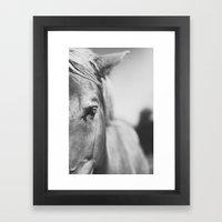 The Spirited Horse Framed Art Print