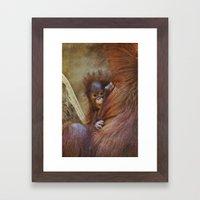 Orangutan Baby Framed Art Print