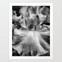 Flower Dance Art Print