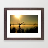 Sun Worshipper  Framed Art Print