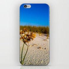 Beach Bouquet iPhone & iPod Skin