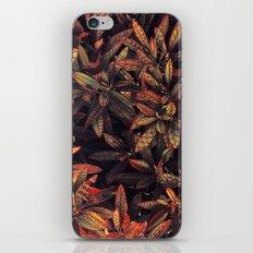 leaves evolved 5 iPhone & iPod Skin