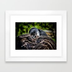 I Am Watching You Framed Art Print