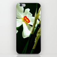 flower dream iPhone & iPod Skin