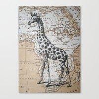 African Giraffe Canvas Print