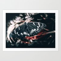 Above the darkness Art Print