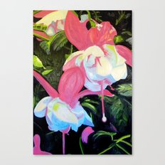 Fushcia Function Canvas Print