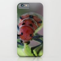 iPhone Cases featuring Cute little fella! by kealaphotography