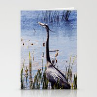 Great Blue Heron In The … Stationery Cards