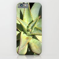 iPhone & iPod Case featuring Agave I by TS Photography