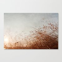 red harvest 002 Canvas Print