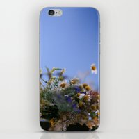 Daisies In Blue iPhone & iPod Skin