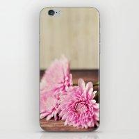 Rustic Pink iPhone & iPod Skin